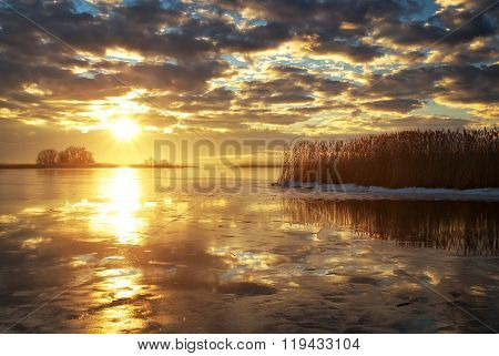 Winter landscape with river reeds and sunset sky. Beautiful winter landscape. Composition of nature.