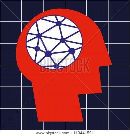 Neural Pathways in the Brain