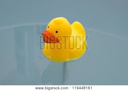 Yellow Toy Duck In Bath With