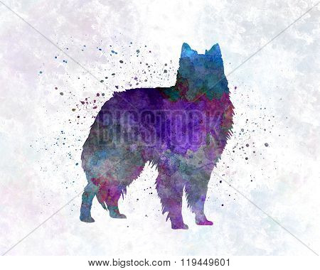 Belgian Shepherd Dog In Watercolor