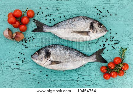 Two Raw Dorado Fish On Blue Background. Top View.