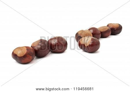 Lined Up Chestnuts With One Off The Crowd