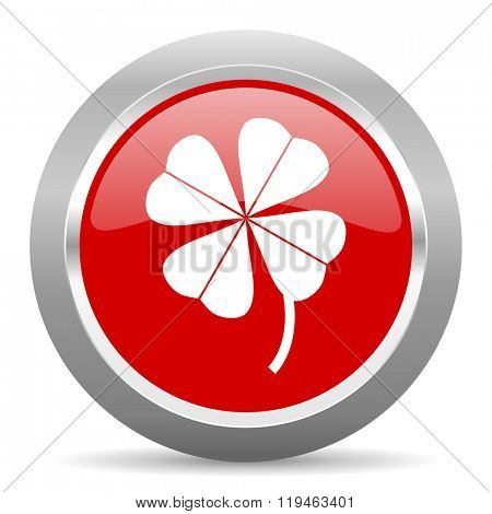 four-leaf clover red chrome web circle glossy icon