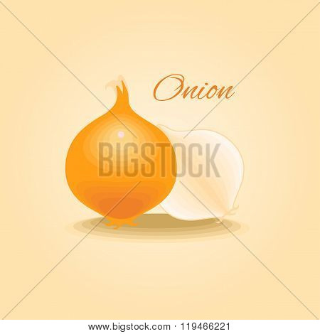 Fresh onion vector illustration