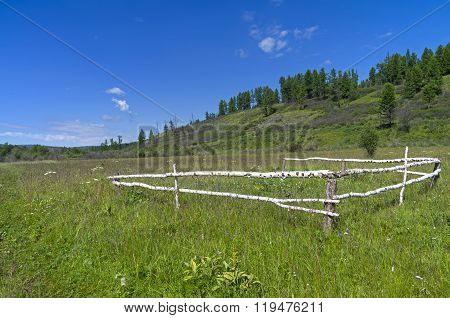 Tumbledown Corral In A Meadow.