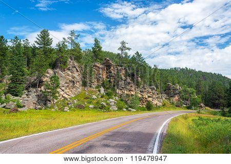 Road In Custer State Park