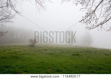 Fog On A Mountain In French Pyrenees