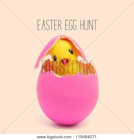 the text easter egg hunt and a teddy chick emerging from a hatched pink easter egg, against a pale pink background