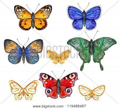 Colored Butterflies Set