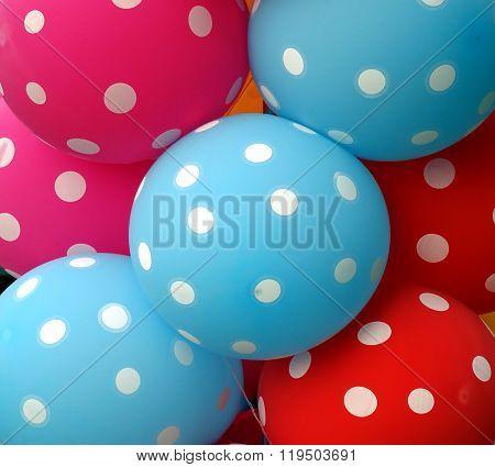 Colorful Balloons Make A Happy Mood