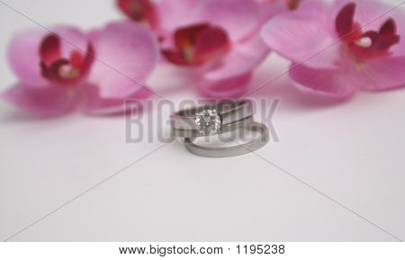 Pretty Wedding Rings