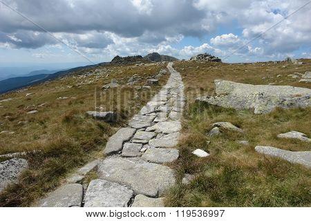 Road On The Chopok Mountain.