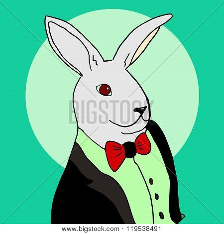 Rabbit In A Tuxedo.