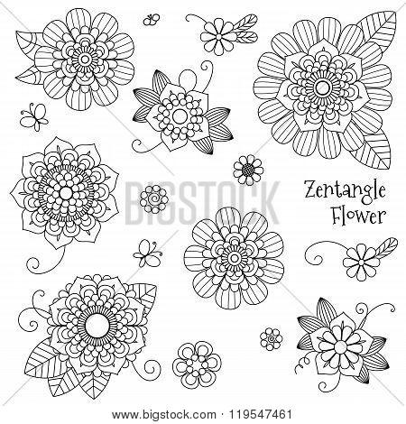 Vector Beautiful Zentangle, Doodle Flowers