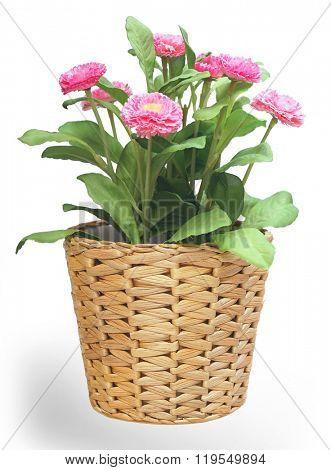 Vertical image of artificial plants in wicker pot.