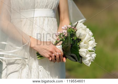 Bouquet And Blooming Sprig Of Apple In Hands