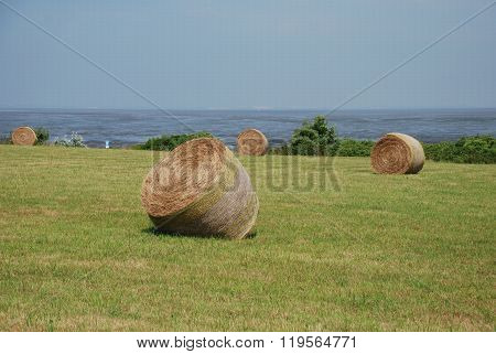 Round Bales Sylt Germany