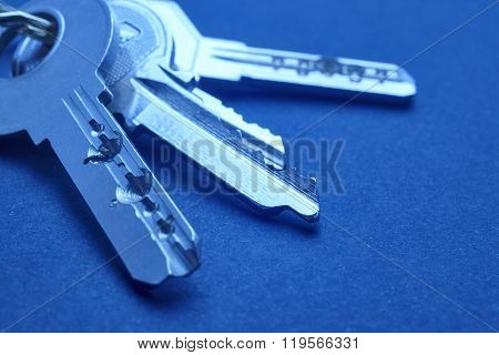 Keyring With Keys In Blue Tone Over An Empty Background