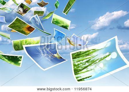 Photos flying through the air