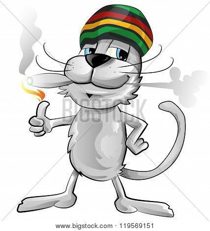 fun jamaican cat isolated on white background