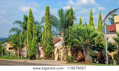 Beautiful residential area.