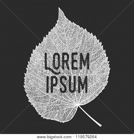 Vector Skeletonized Leaf With Text