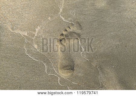 Next The Human Foot In Sand