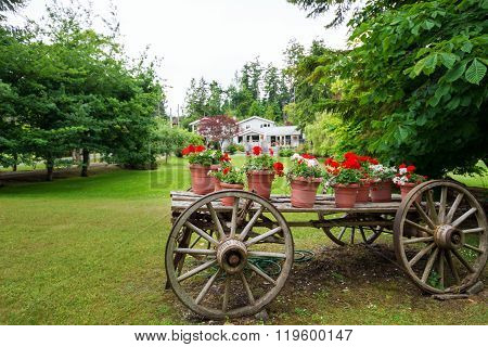 Old wooden wagon filled with flowers and plants in terracotta pots.