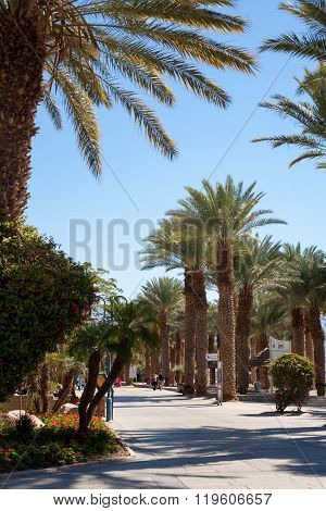 Eilat Street