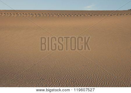 Footprints Across Death Valley Dunes