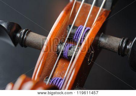 abstract macro shot of classic violin, closeup strings of violin