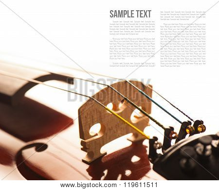 abstract violin over white background, closeup string of violin