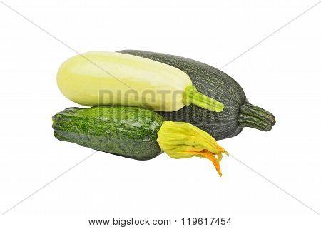 Green Vegetable Marrow (zucchini)