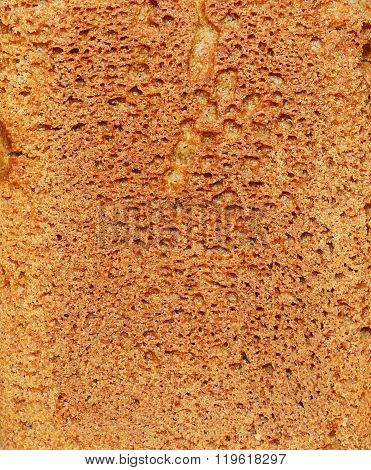 Brown Bread Texture