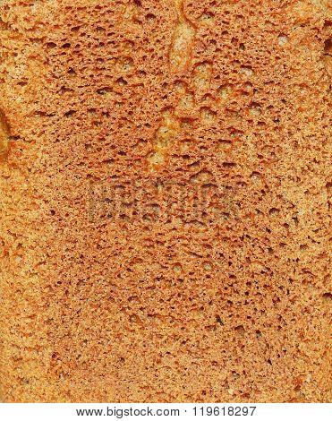 Brown Bread Texture