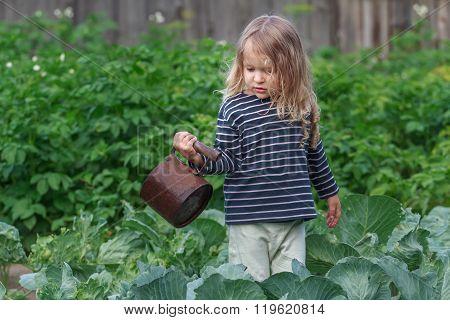 Three years old little gardener watering her pepper plants in green summer garden