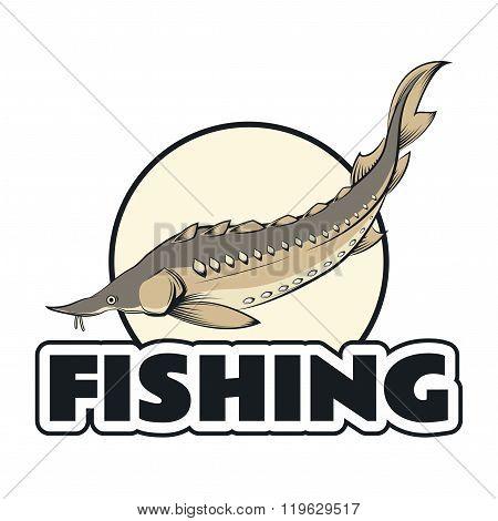 Sturgeon fishing banner