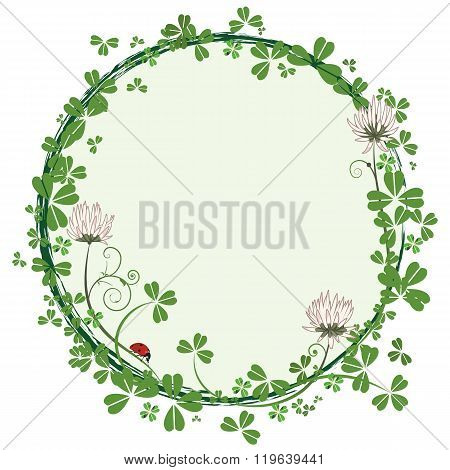Frame With Flowers Of Clover