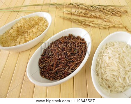 Varieties of rice and rice panicles