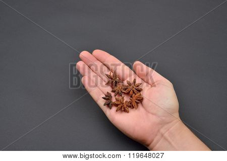 Man's Hand Holding A Pile Of Anise Isolated On Black Background. Spice. Taste. Cooking. Food And Bev