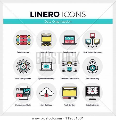 Data Organization Linero Icons Set
