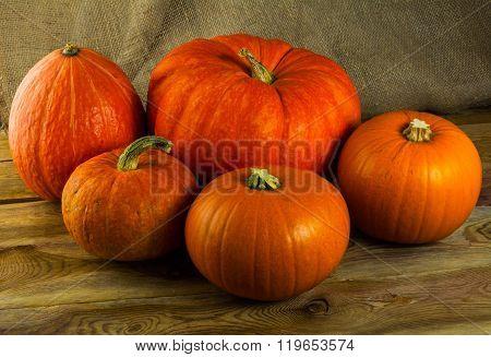 Five  Pumpkins On Dark Wooden Background