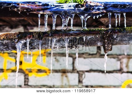 Icicles On Old Gully Of House With Brick Wall