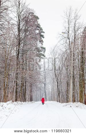Woman Walking Along Snow Road Under Snowfall