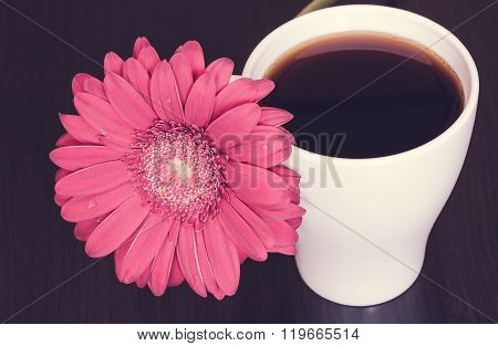 Pink Gerbera Flower And Cup Of Coffee On The Wooden Desk