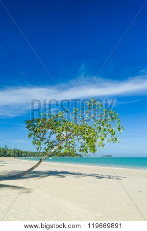 White sand beach in  Khao Lak Thailand