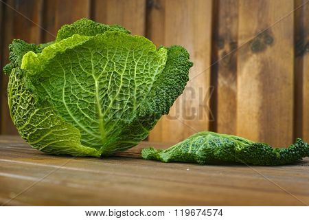 Single head of Savoy cabbage over rustic wooden background