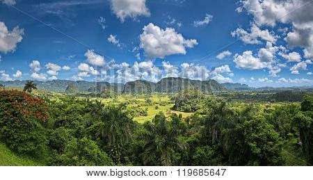 Panoramic view of the valley of Vinales in Pinar del Rio (Cuba). This place is known for the cultiva