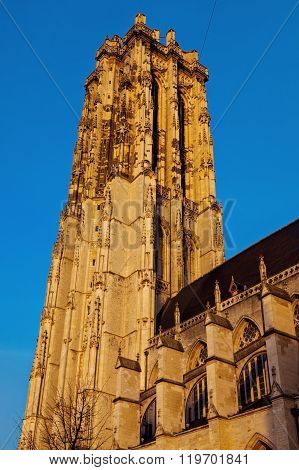 Saint Rumbold's Cathedral in Mechelen. Mechelen Flemish Region Belgium ** Note: Visible grain at 100%, best at smaller sizes