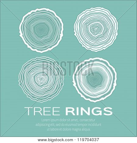 Tree rings background and saw cut tree trunk vector forestry and sawmill.